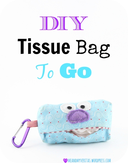 DIY Tissue Bag To Go